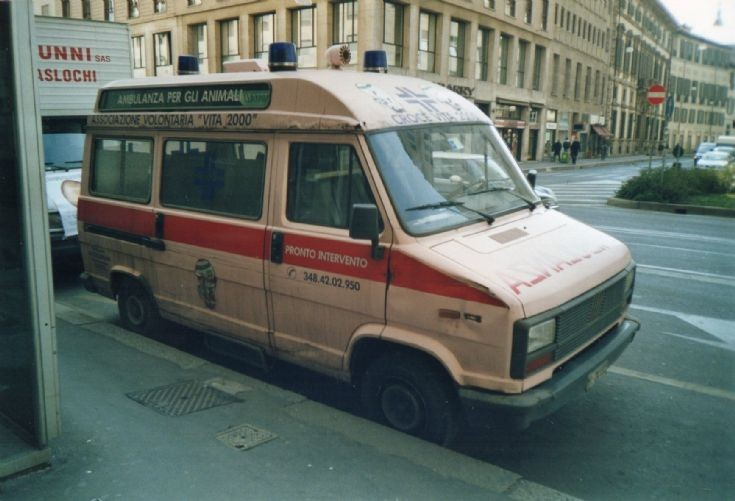 Veterinary Ambulance, Milan 2004